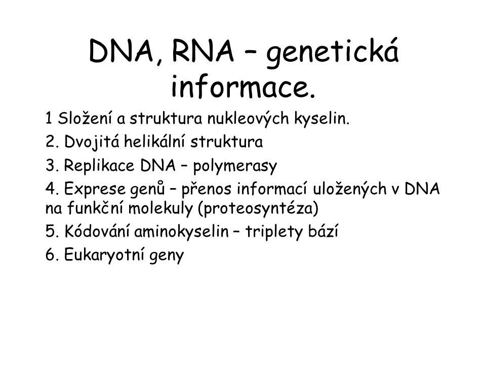 DNA, RNA – genetická informace. 1 Složení a struktura nukleových kyselin. 2. Dvojitá helikální struktura 3. Replikace DNA – polymerasy 4. Exprese genů