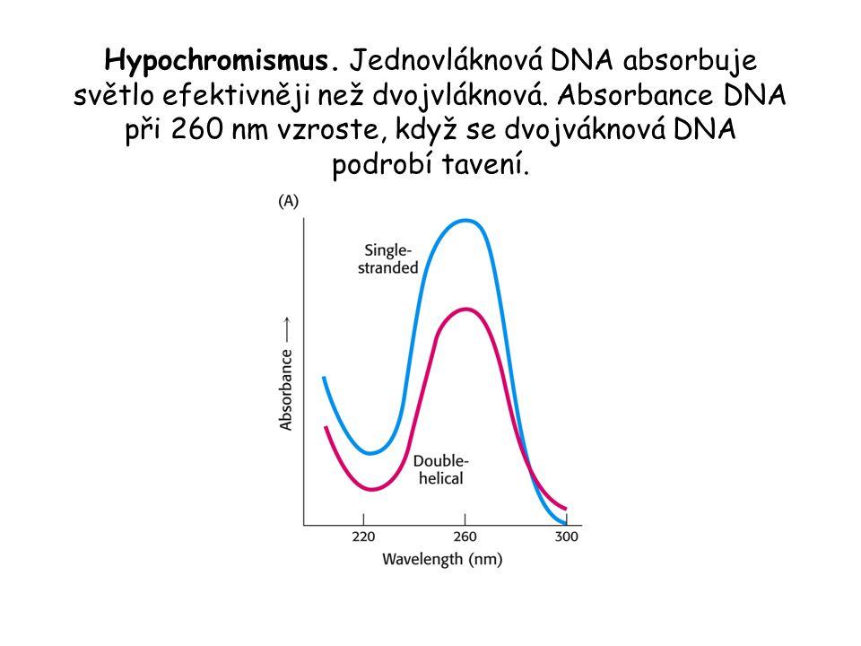 Hypochromismus. Jednovláknová DNA absorbuje světlo efektivněji než dvojvláknová. Absorbance DNA při 260 nm vzroste, když se dvojváknová DNA podrobí ta