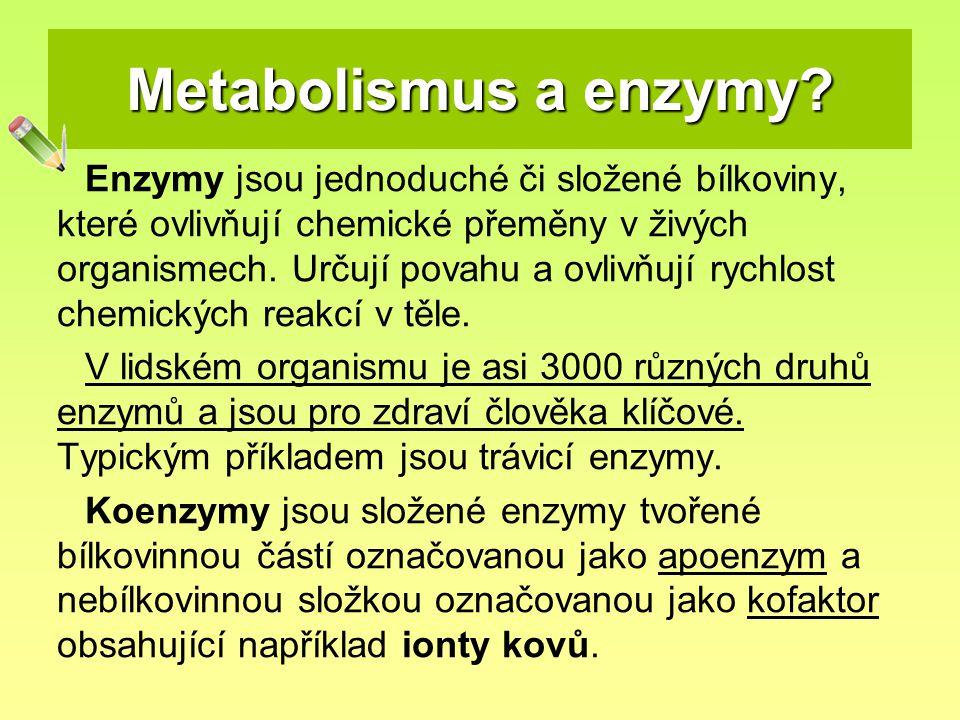 Metabolismus a enzymy? Enzymy jsou jednoduché či složené bílkoviny, které ovlivňují chemické přeměny v živých organismech. Určují povahu a ovlivňují r