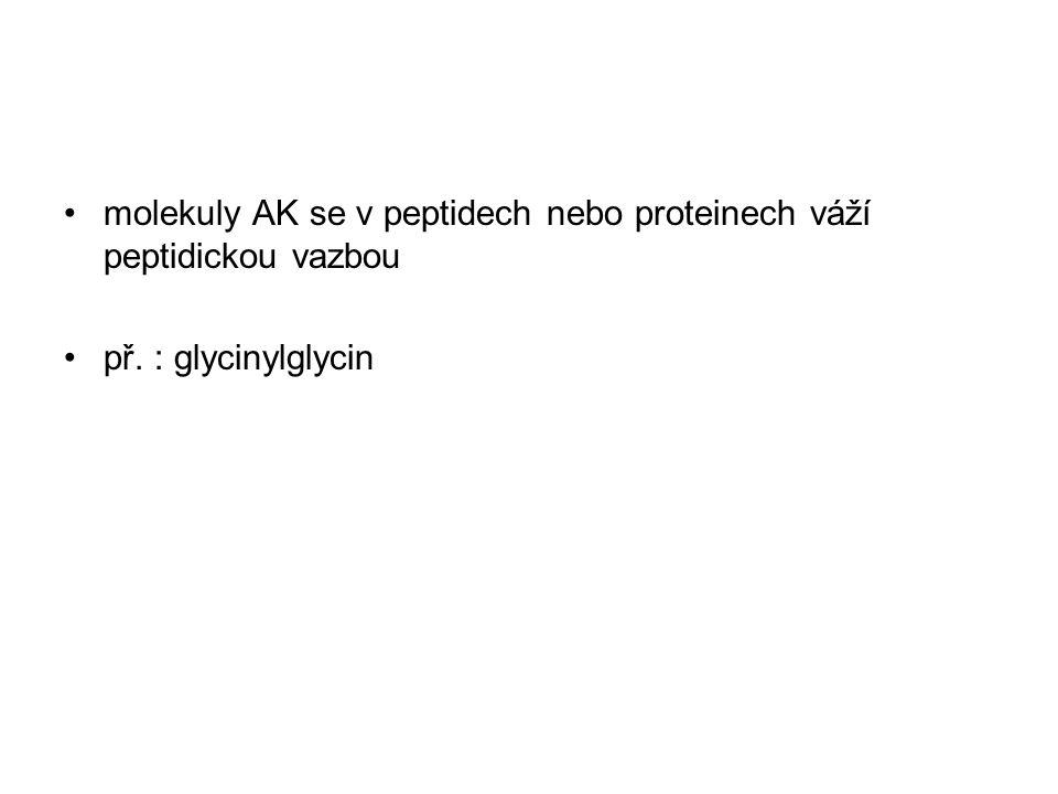 molekuly AK se v peptidech nebo proteinech váží peptidickou vazbou př. : glycinylglycin