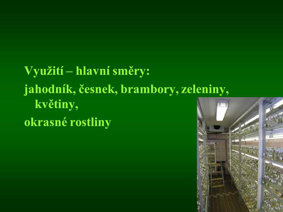 Využití – hlavní směry: jahodník, česnek, brambory, zeleniny, květiny, okrasné rostliny