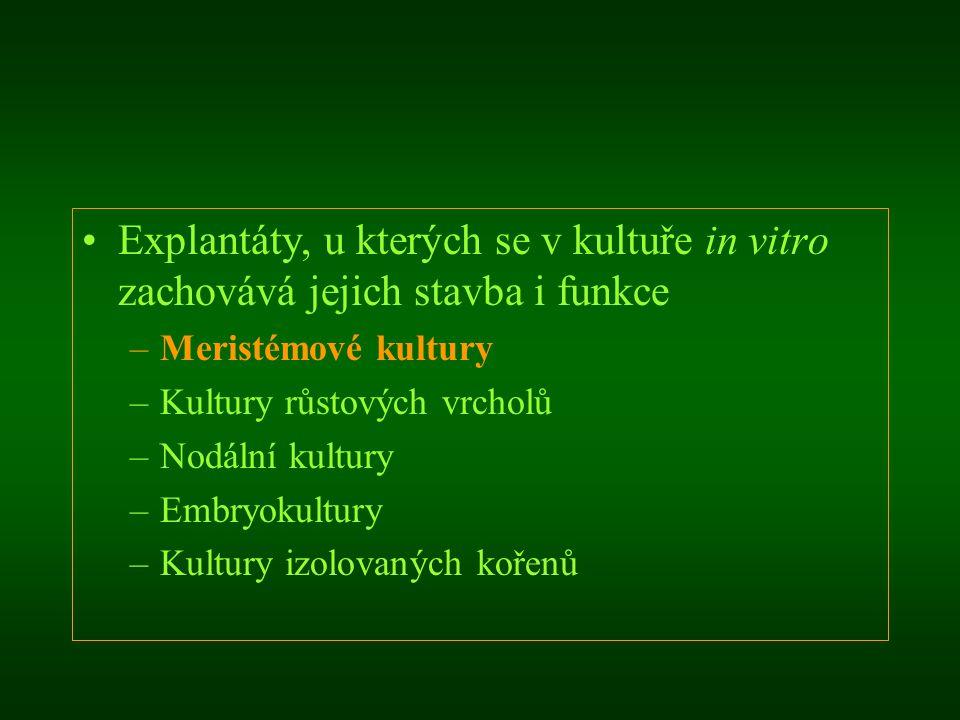 Explantáty, u kterých se v kultuře in vitro zachovává jejich stavba i funkce –Meristémové kultury –Kultury růstových vrcholů –Nodální kultury –Embryok