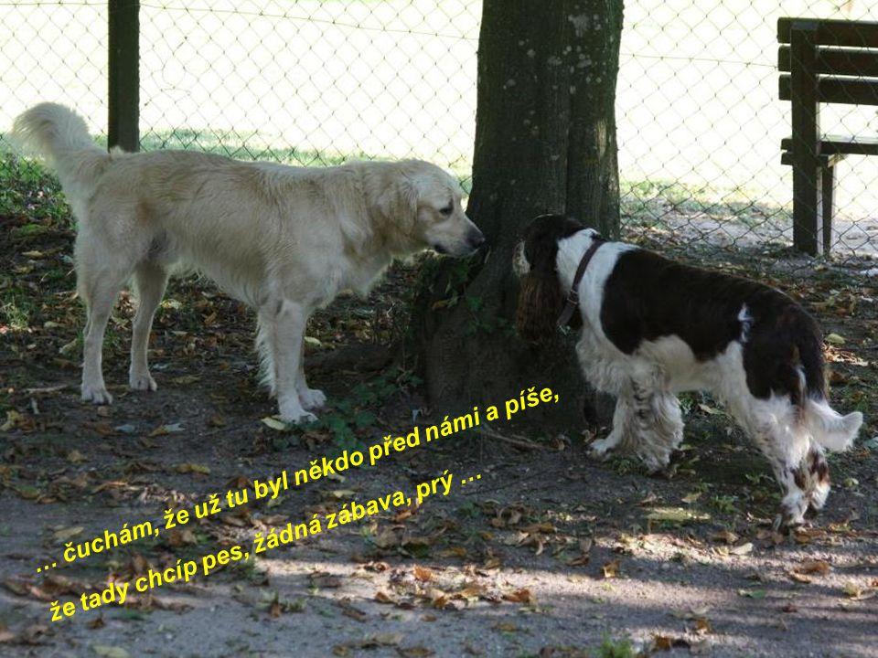 … čuchám, že už tu byl někdo před námi a píše, že tady chcíp pes, žádná zábava, prý …