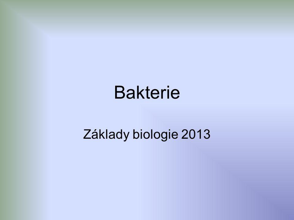 Definice bakterií Bakterie Bakterie jsou prokaryontní jednobuněčné organismy, které se rozmnožují příčným dělením.