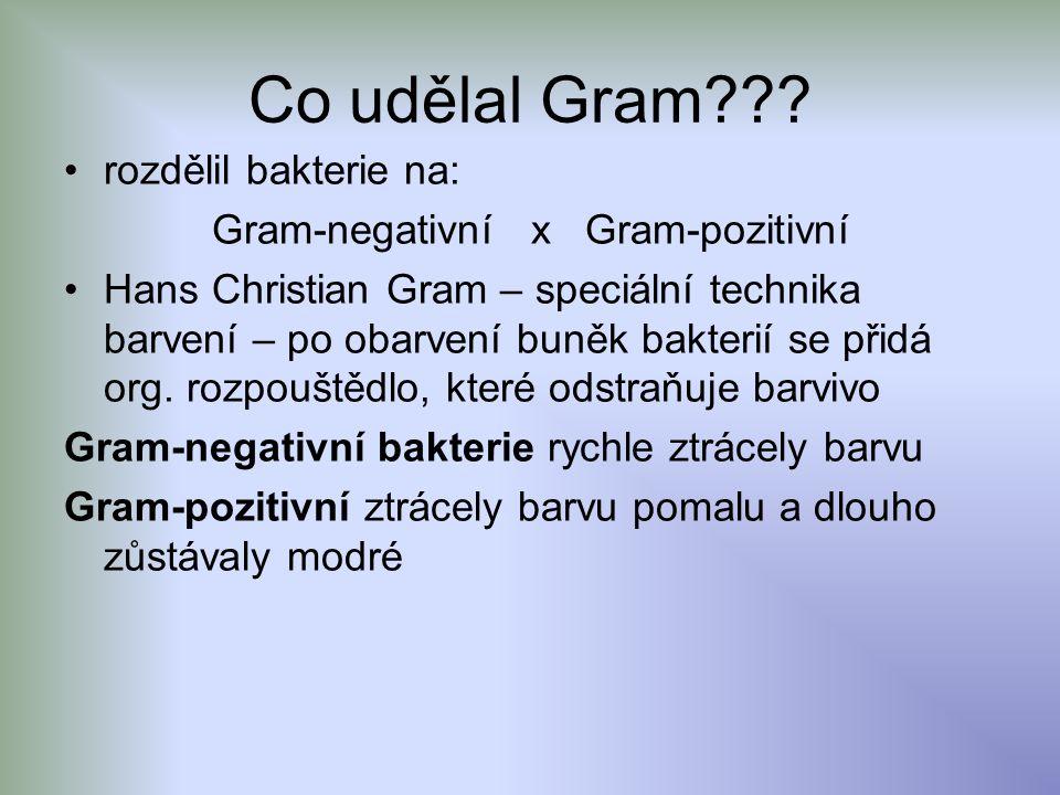 Co udělal Gram??? rozdělil bakterie na: Gram-negativní x Gram-pozitivní Hans Christian Gram – speciální technika barvení – po obarvení buněk bakterií