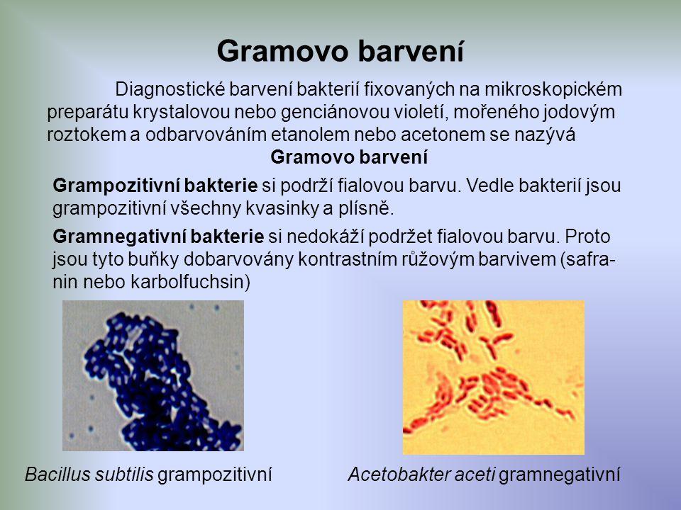Gramovo barven í Diagnostické barvení bakterií fixovaných na mikroskopickém preparátu krystalovou nebo genciánovou violetí, mořeného jodovým roztokem