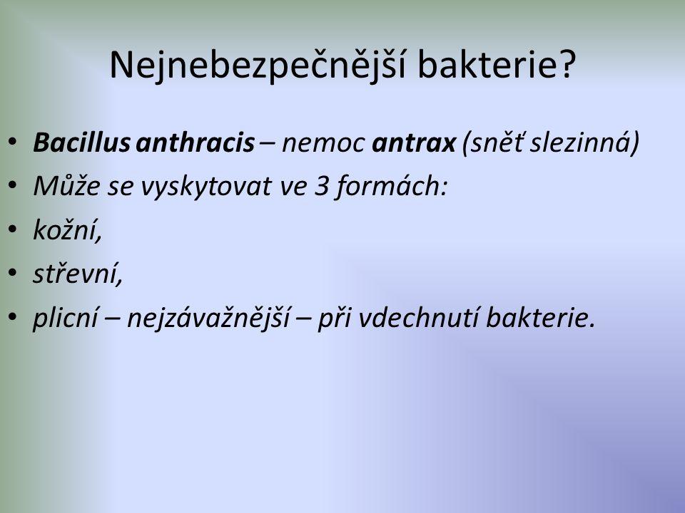 Nejnebezpečnější bakterie? Bacillus anthracis – nemoc antrax (sněť slezinná) Může se vyskytovat ve 3 formách: kožní, střevní, plicní – nejzávažnější –