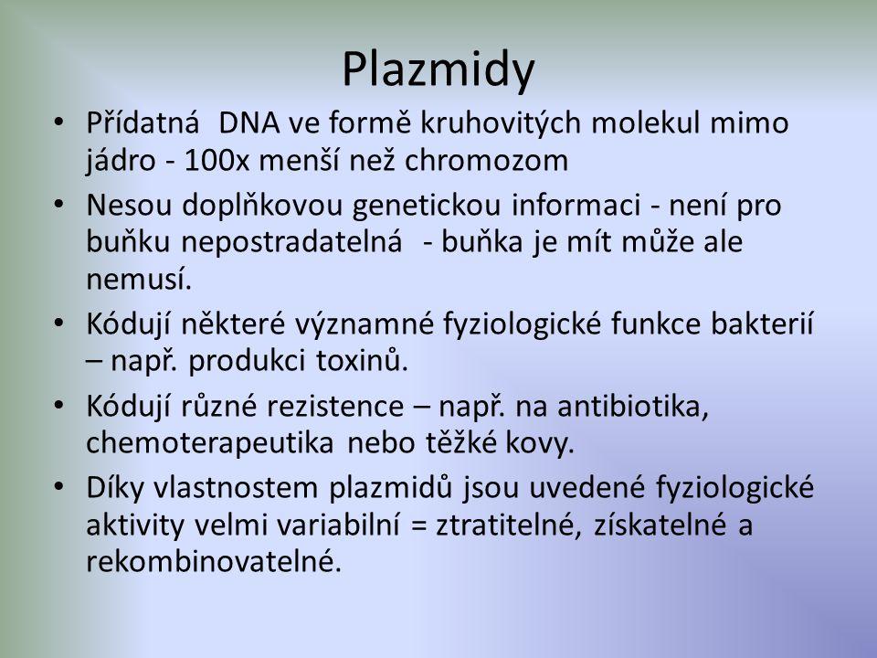 Plazmidy Přídatná DNA ve formě kruhovitých molekul mimo jádro - 100x menší než chromozom Nesou doplňkovou genetickou informaci - není pro buňku nepost