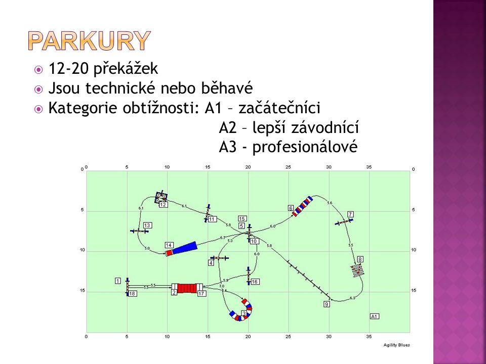  12-20 překážek  Jsou technické nebo běhavé  Kategorie obtížnosti: A1 – začátečníci A2 – lepší závodnící A3 - profesionálové