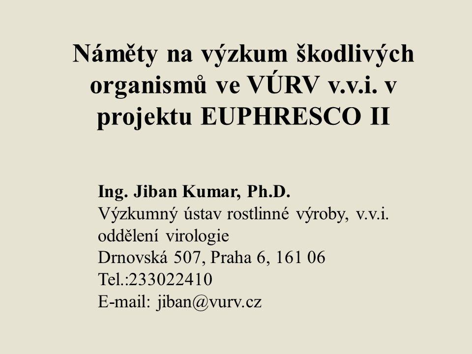 Náměty na výzkum škodlivých organismů ve VÚRV v.v.i. v projektu EUPHRESCO II Ing. Jiban Kumar, Ph.D. Výzkumný ústav rostlinné výroby, v.v.i. oddělení