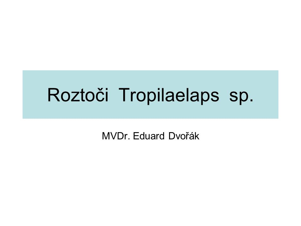 Roztoči Tropilaelaps sp. MVDr. Eduard Dvořák