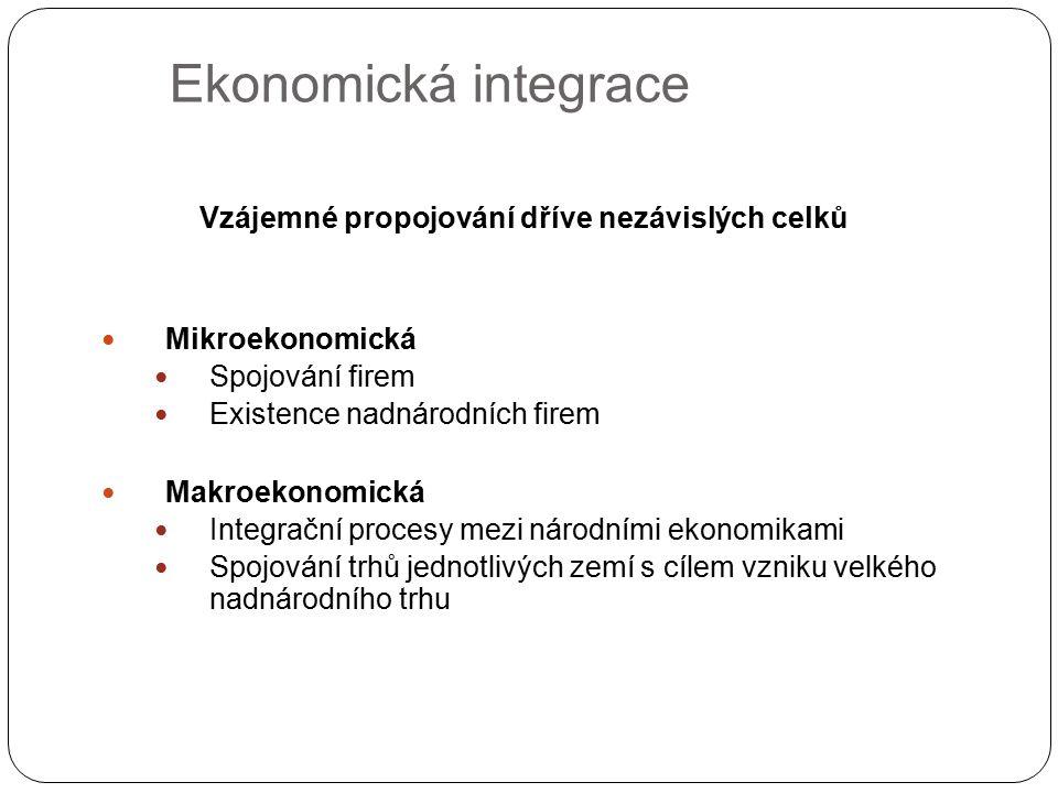 Ekonomická integrace Vzájemné propojování dříve nezávislých celků Mikroekonomická Spojování firem Existence nadnárodních firem Makroekonomická Integra