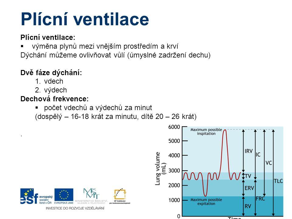 Plícní ventilace Plícní ventilace:  výměna plynů mezi vnějším prostředím a krví Dýchání můžeme ovlivňovat vůlí (úmyslné zadržení dechu) Dvě fáze dých