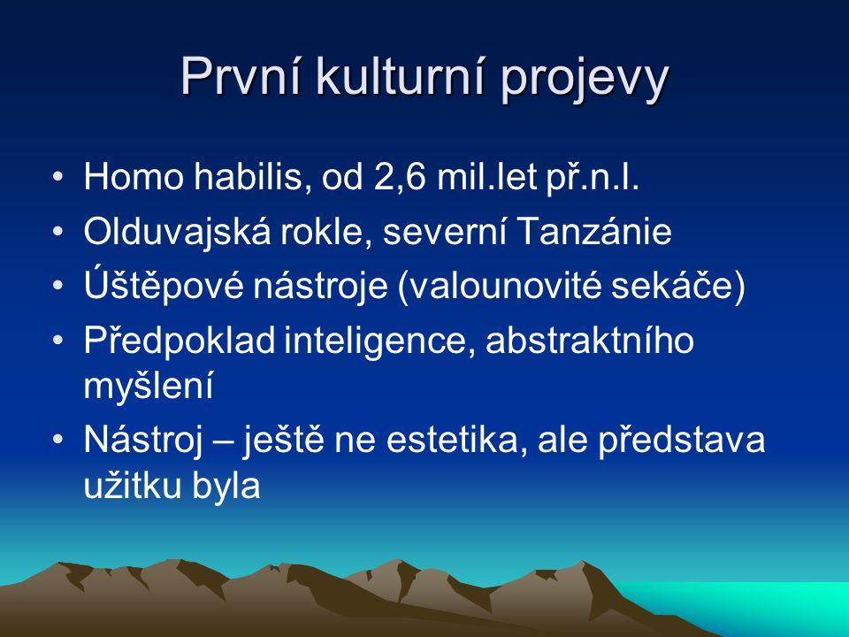První kulturní projevy Homo habilis, od 2,6 mil.let př.n.l. Olduvajská rokle, severní Tanzánie Úštěpové nástroje (valounovité sekáče) Předpoklad intel