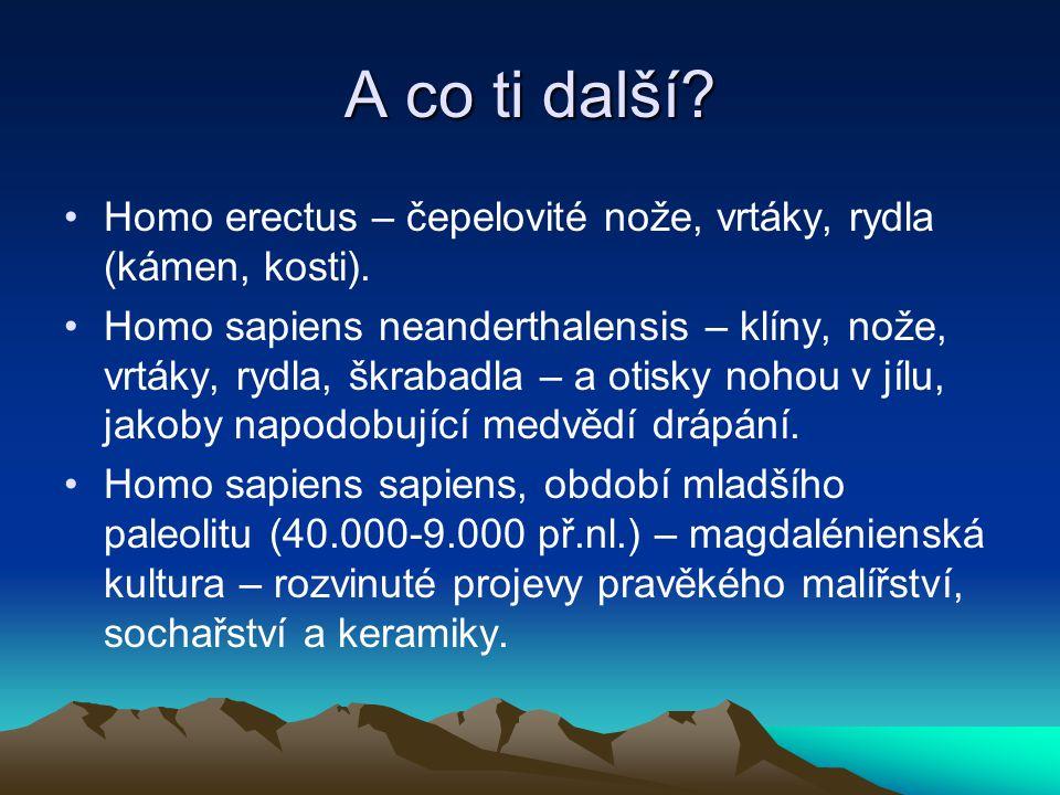 A co ti další? Homo erectus – čepelovité nože, vrtáky, rydla (kámen, kosti). Homo sapiens neanderthalensis – klíny, nože, vrtáky, rydla, škrabadla – a