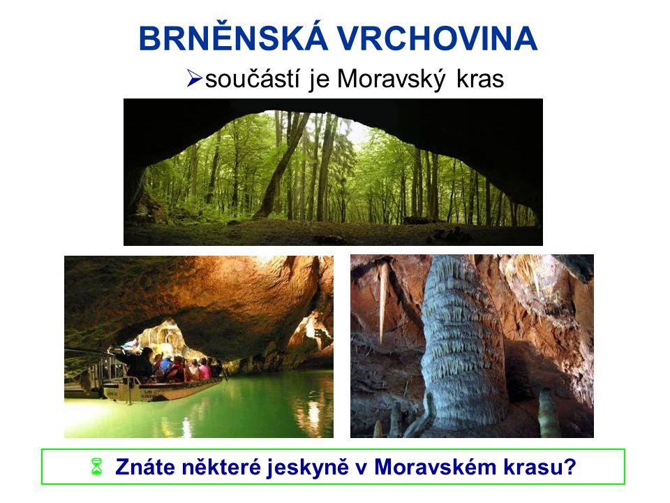 BRNĚNSKÁ VRCHOVINA  Znáte některé jeskyně v Moravském krasu?  součástí je Moravský kras
