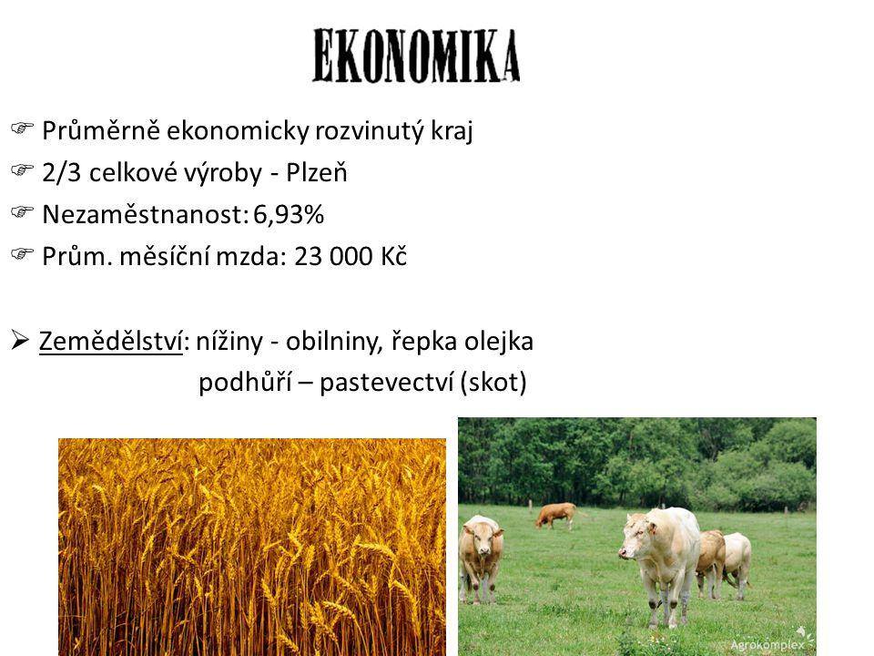  Průměrně ekonomicky rozvinutý kraj  2/3 celkové výroby - Plzeň  Nezaměstnanost: 6,93%  Prům. měsíční mzda: 23 000 Kč  Zemědělství: nížiny - obil