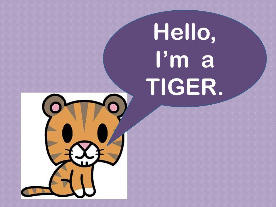 Hello, I'm a TIGER.