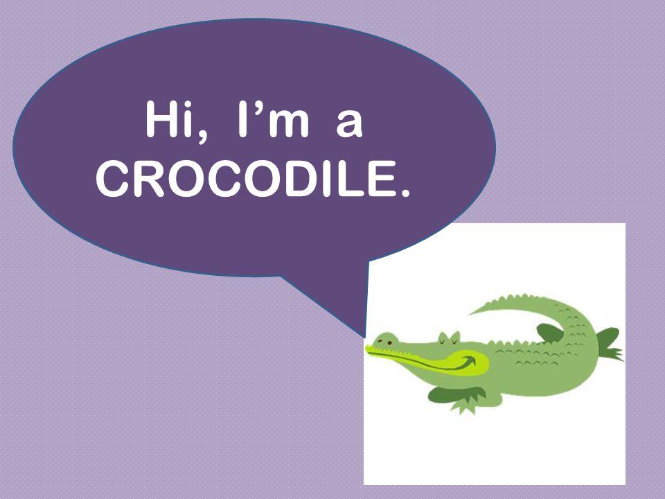 Hi, I'm a CROCODILE.