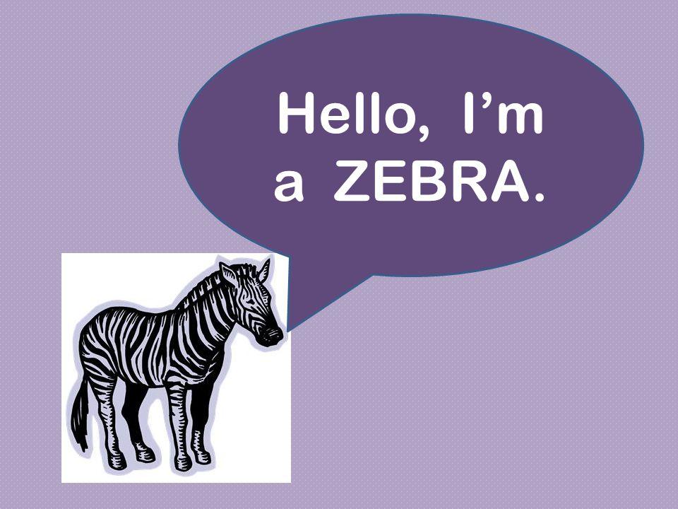 Hello, I'm a ZEBRA.