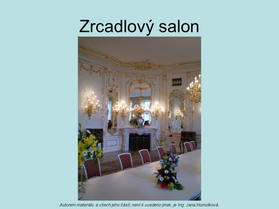 Zrcadlový salon Autorem materiálu a všech jeho částí, není-li uvedeno jinak, je Ing. Jana Homolková.