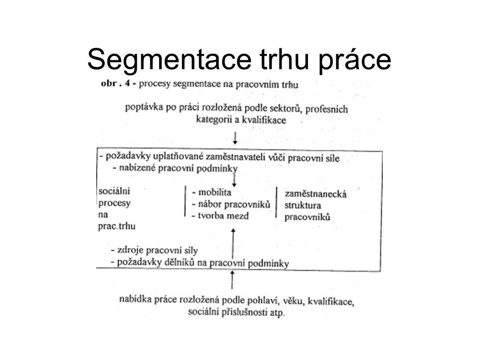 Segmentace pracovníků Teorie duálního trhu Primární x sekundární trh práce Formální x Neformální Interní x Externí Insider – outsider theory