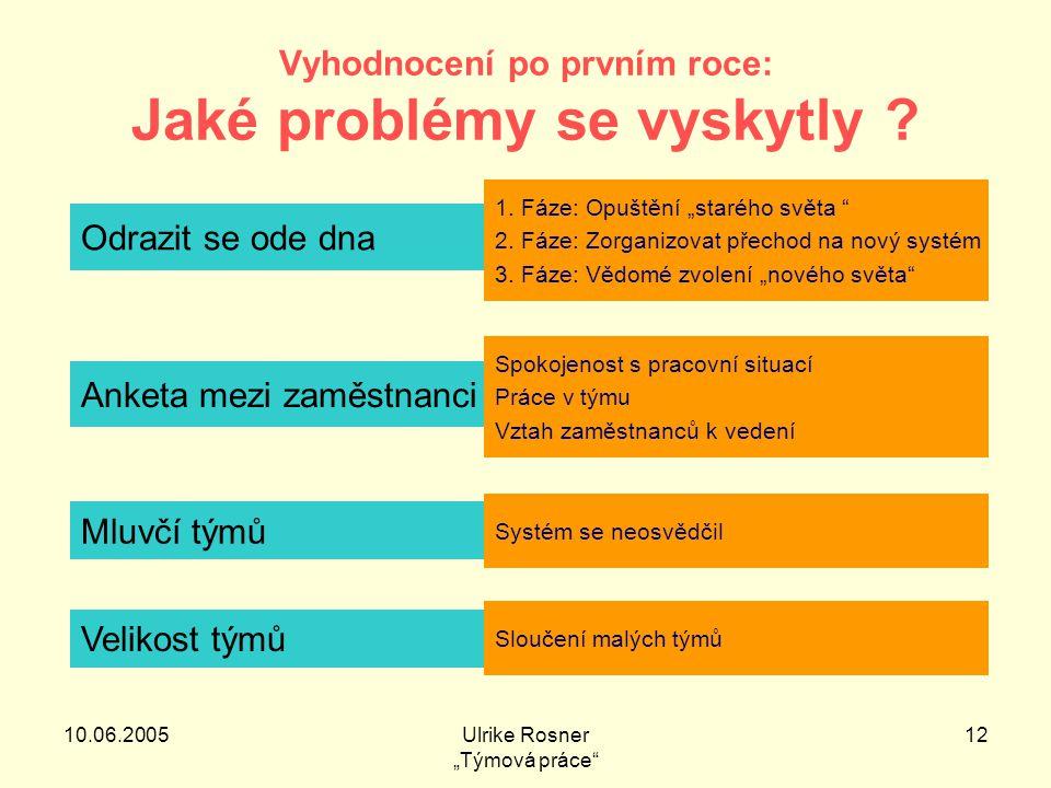 """10.06.2005Ulrike Rosner """"Týmová práce 12 Vyhodnocení po prvním roce: Jaké problémy se vyskytly ."""
