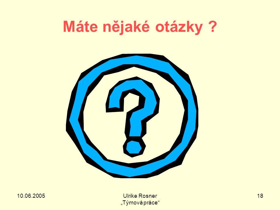"""10.06.2005Ulrike Rosner """"Týmová práce 18 Máte nějaké otázky"""