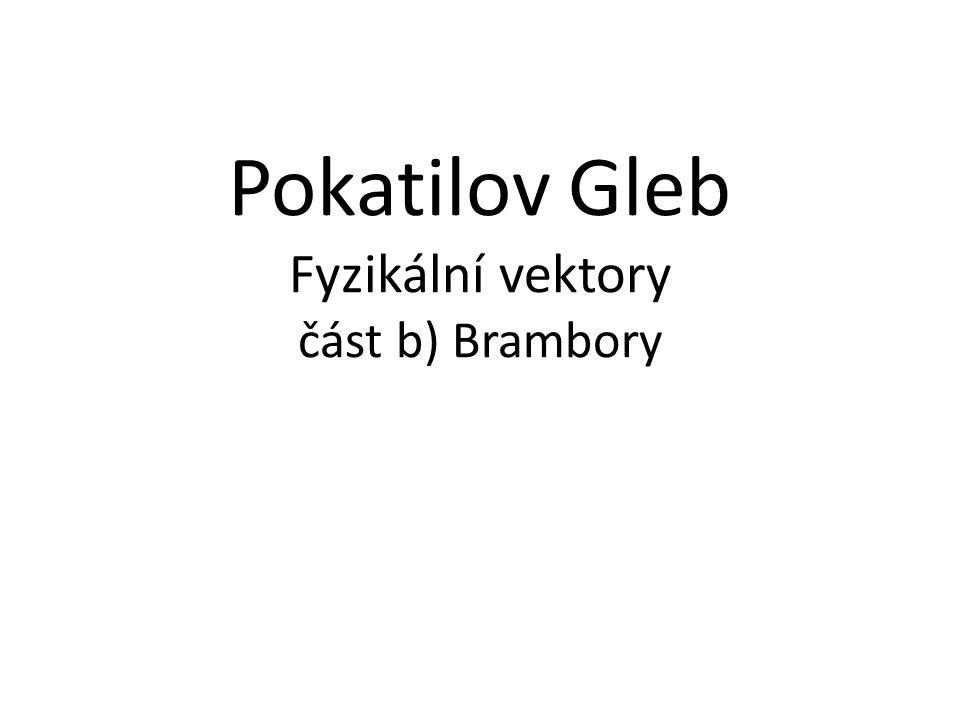 Pokatilov Gleb Fyzikální vektory část b) Brambory