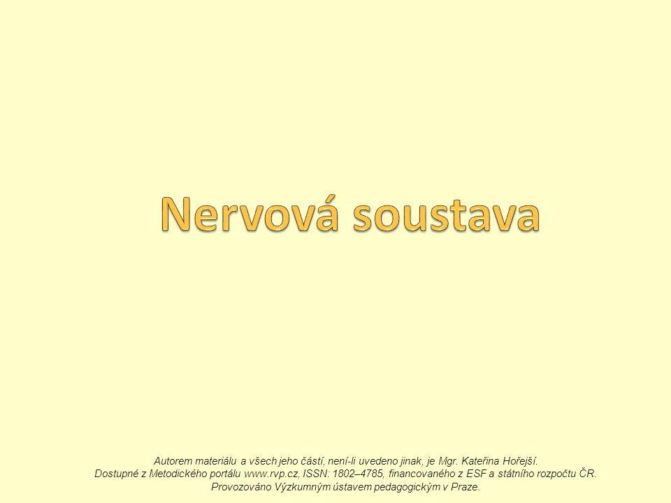 Autorem materiálu a všech jeho částí, není-li uvedeno jinak, je Mgr. Kateřina Hořejší. Dostupné z Metodického portálu www.rvp.cz, ISSN: 1802–4785, fin