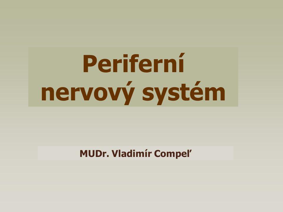 Periferní nervový systém MUDr. Vladimír Compeľ