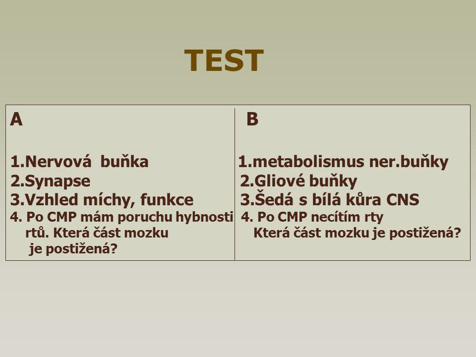 A B 1.Nervová buňka 1.metabolismus ner.buňky 2.Synapse 2.Gliové buňky 3.Vzhled míchy, funkce 3.Šedá s bílá kůra CNS 4. Po CMP mám poruchu hybnosti 4.