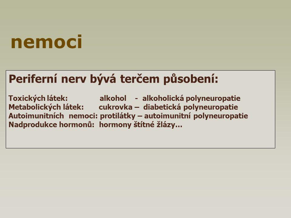 Periferní nerv bývá terčem působení: Toxických látek: alkohol - alkoholická polyneuropatie Metabolických látek: cukrovka – diabetická polyneuropatie A
