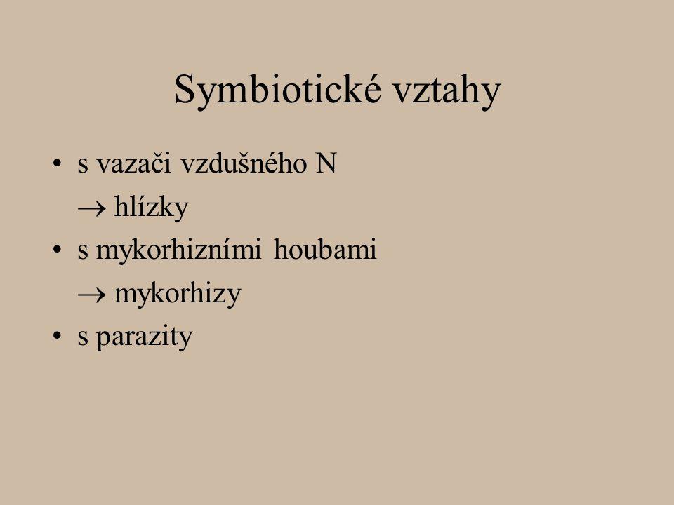 Symbiotické vztahy s vazači vzdušného N  hlízky s mykorhizními houbami  mykorhizy s parazity