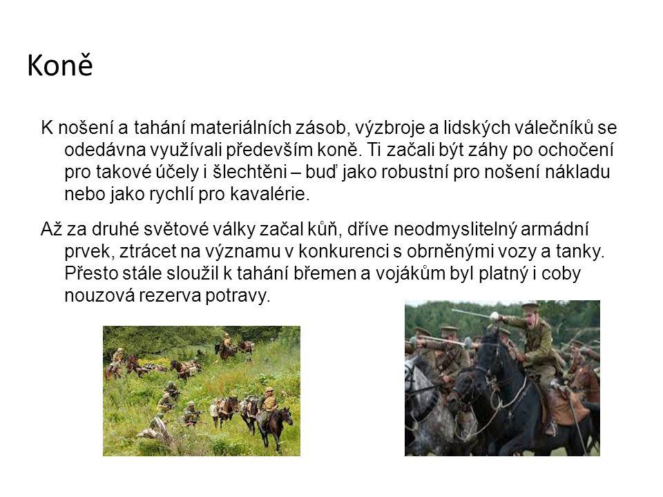 Koně K nošení a tahání materiálních zásob, výzbroje a lidských válečníků se odedávna využívali především koně.