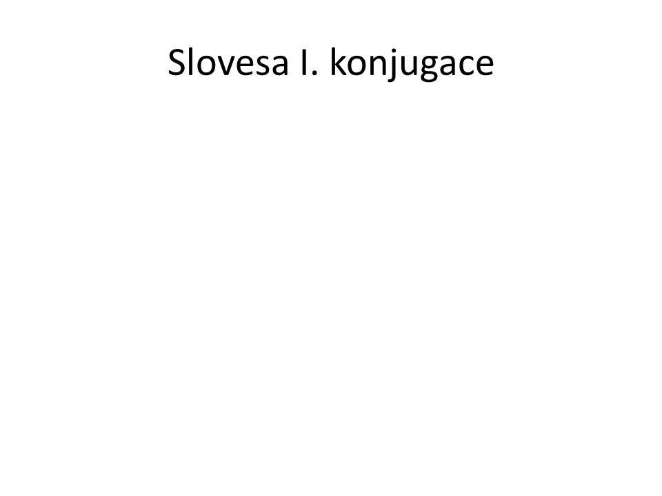 Slovesa I. konjugace