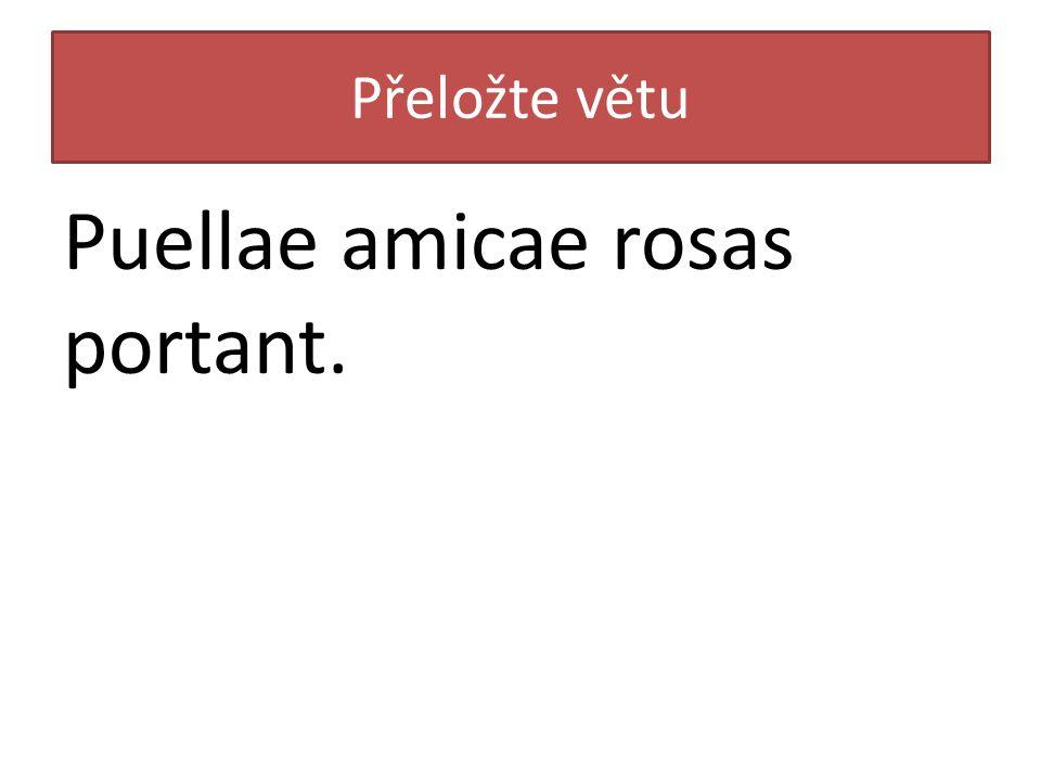 Přeložte větu Puellae amicae rosas portant.