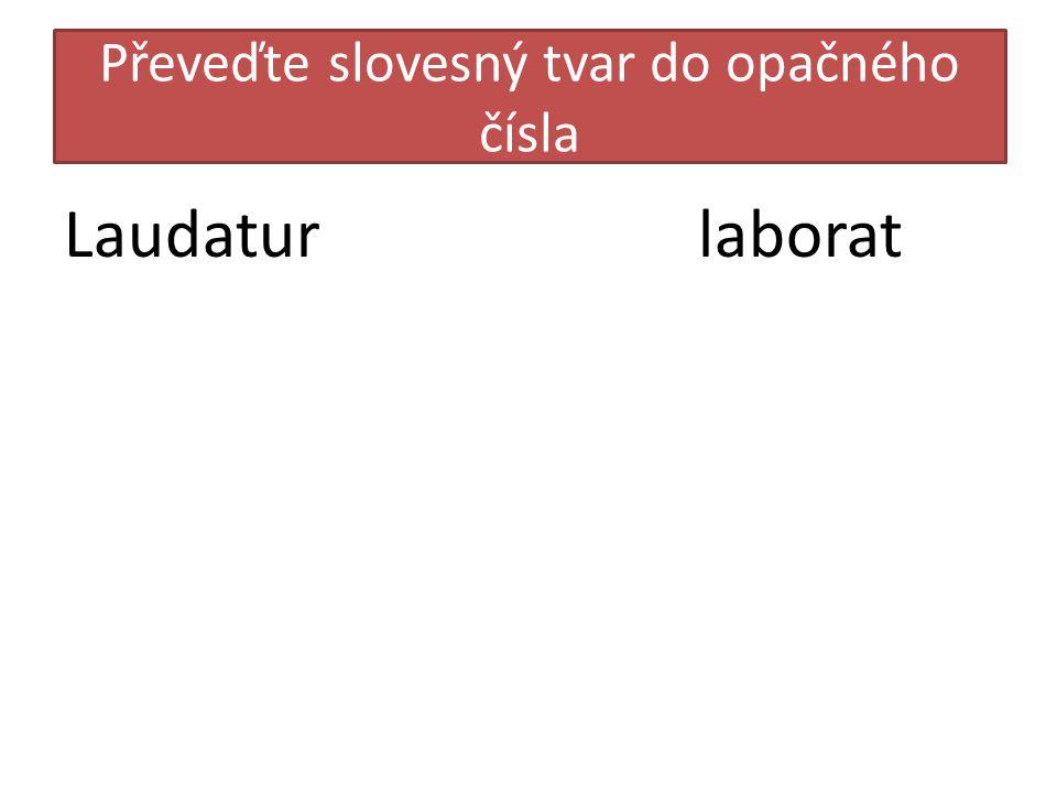 Převeďte slovesný tvar do opačného čísla Laudaturlaborat