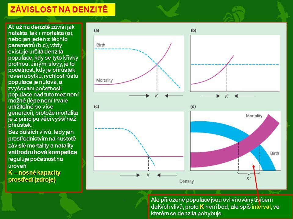 ZÁVISLOST NA DENZITĚ Ať už na denzitě závisí jak natalita, tak i mortalita (a), nebo jen jeden z těchto parametrů (b,c), vždy existuje určitá denzita