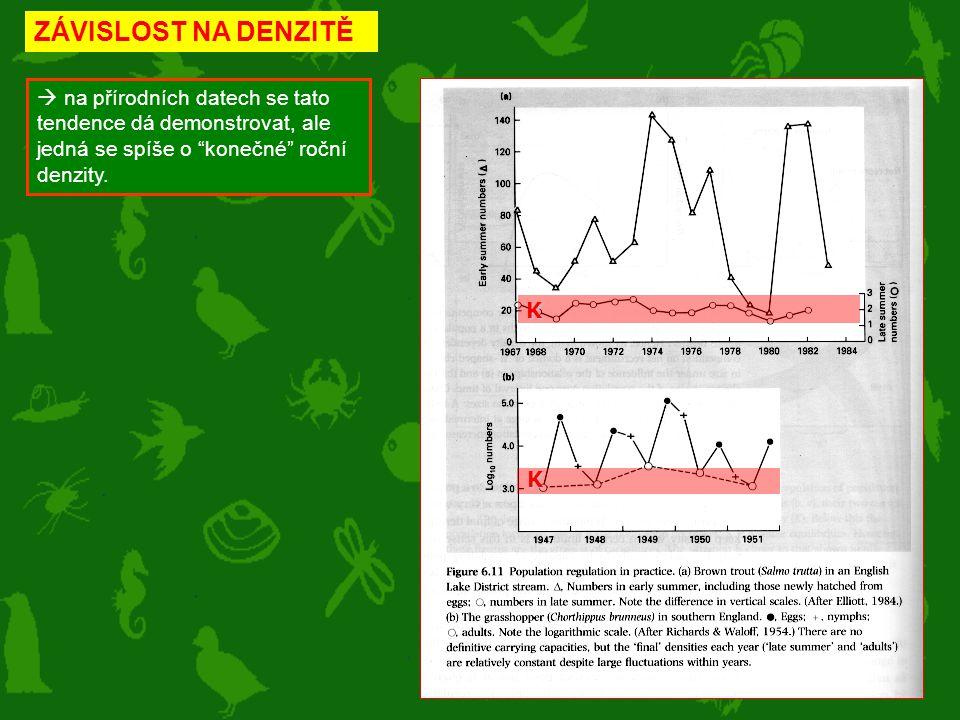 """ na přírodních datech se tato tendence dá demonstrovat, ale jedná se spíše o """"konečné"""" roční denzity. ZÁVISLOST NA DENZITĚK K"""