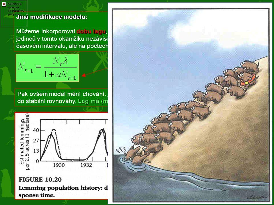 OSCILACE Jiná modifikace modelu: dobu laguN t+1 N t-1 předchozím někdy v minulosti Můžeme inkorporovat dobu lagu, tj. situaci, kdy N t+1 závisí na N t