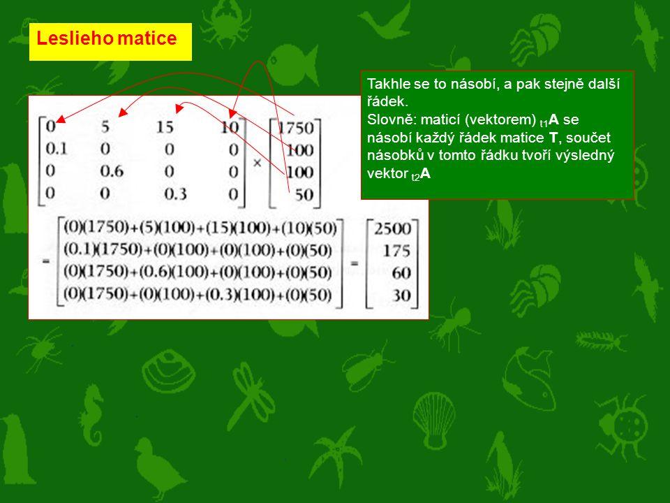 Leslieho matice Takhle se to násobí, a pak stejně další řádek. Slovně: maticí (vektorem) t1 A se násobí každý řádek matice T, součet násobků v tomto ř