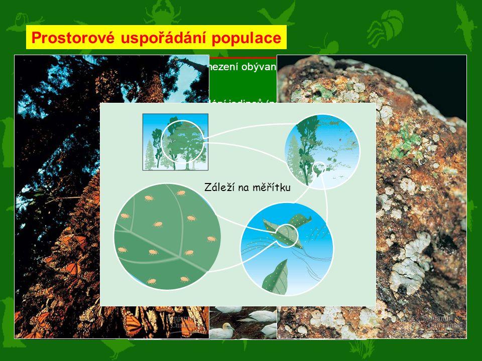 Distribuce – jako areál = územní vymezení obývané populací (podle habitatů) (ptáci zima-léto) Distribuce – jako prostorové uspořádání jedinců (najdete