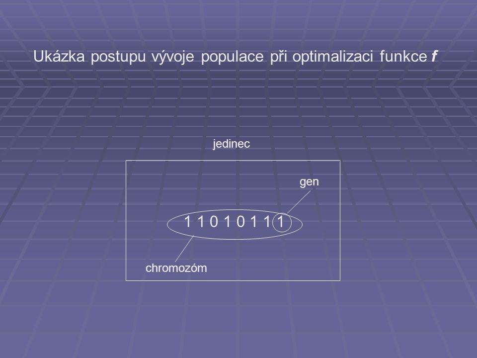 1 1 0 1 0 1 1 1 chromozóm gen jedinec Ukázka postupu vývoje populace při optimalizaci funkce f