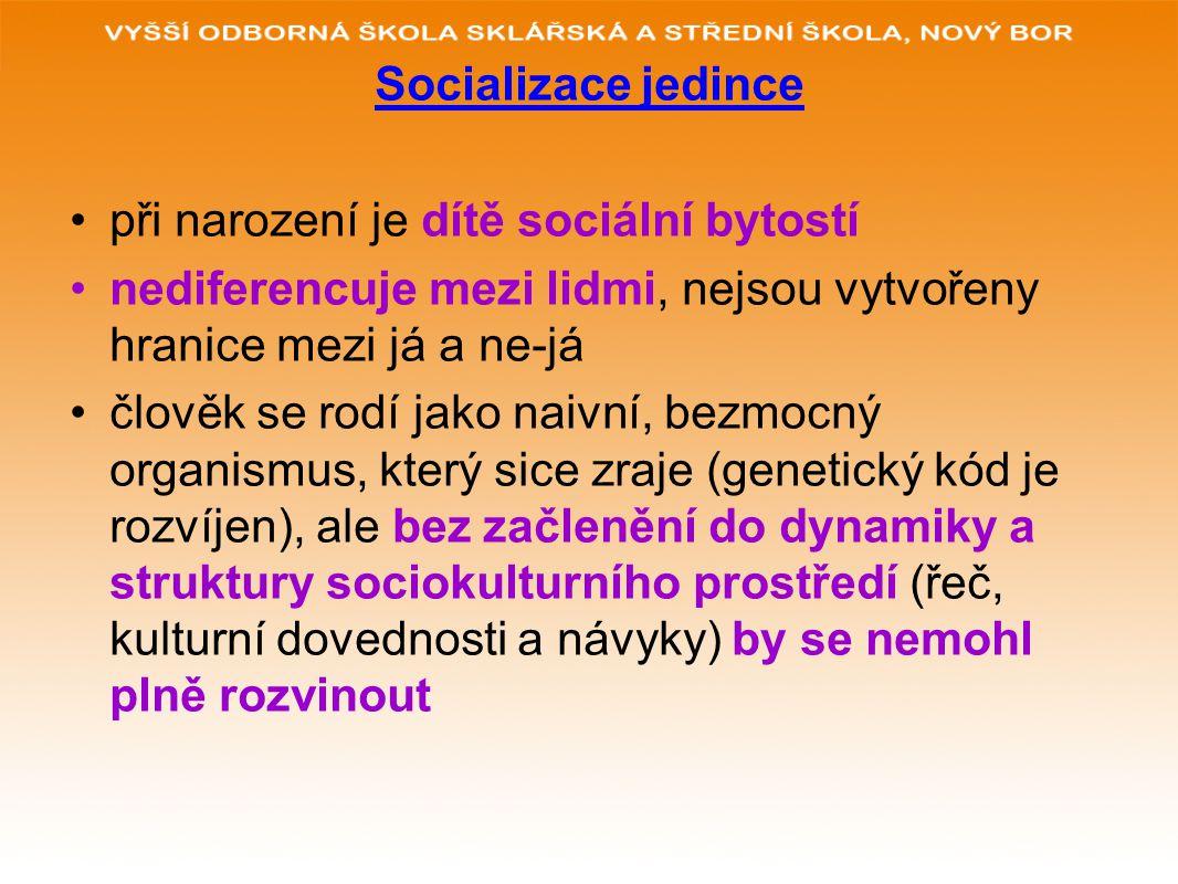 Socializace jedince při narození je dítě sociální bytostí nediferencuje mezi lidmi, nejsou vytvořeny hranice mezi já a ne-já člověk se rodí jako naivn