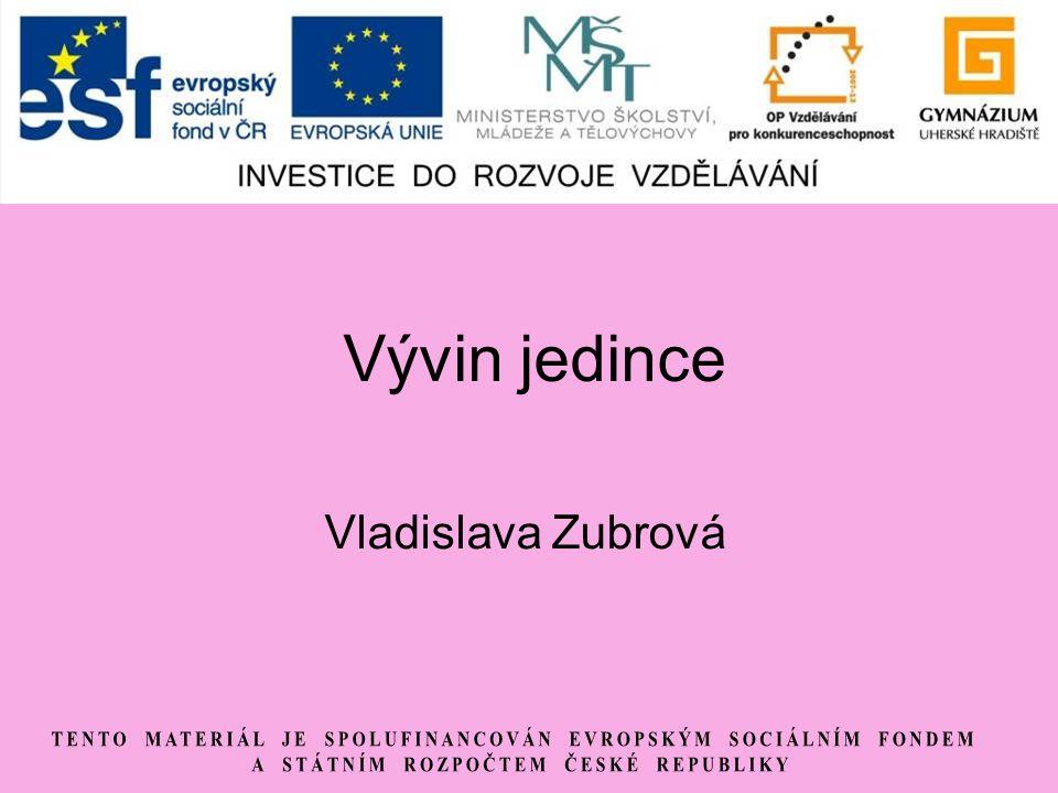 Vývin jedince Vladislava Zubrová