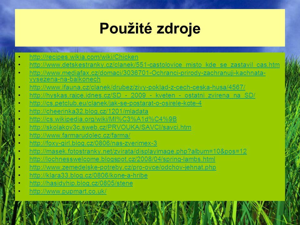 Použité zdroje http://recipes.wikia.com/wiki/Chicken http://www.detskestranky.cz/clanek/551-castolovice_misto_kde_se_zastavil_cas.htm http://www.media