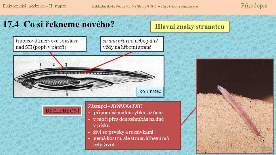 17.5 Procvičení a příklady Elektronická učebnice - II.