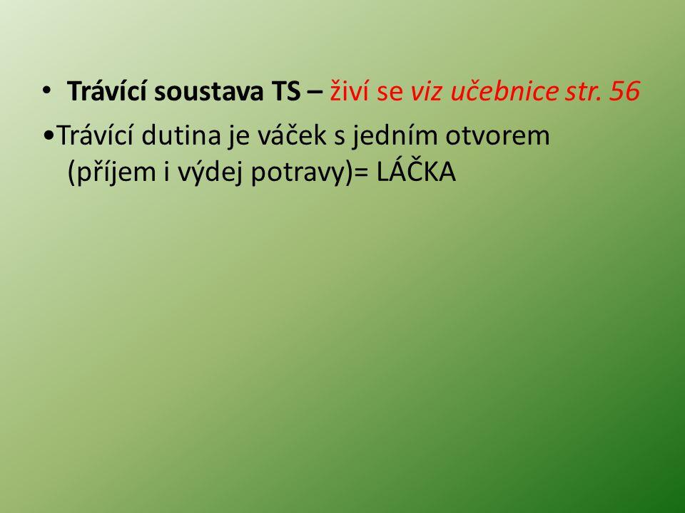 Trávící soustava TS – živí se viz učebnice str.