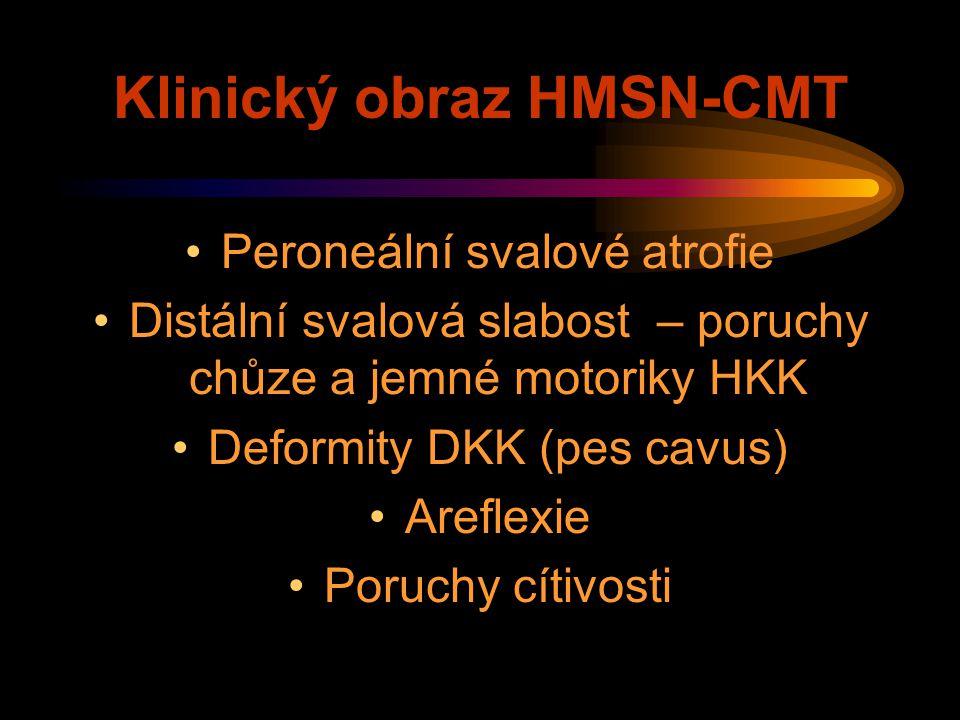 Klinický obraz HMSN-CMT Peroneální svalové atrofie Distální svalová slabost – poruchy chůze a jemné motoriky HKK Deformity DKK (pes cavus) Areflexie P